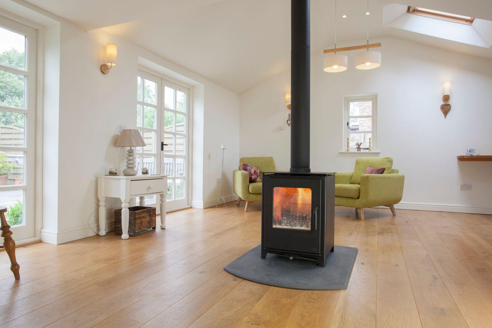Surrey multi fuel stoves